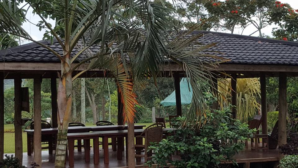 Nile Nest Lodges